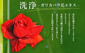 ガリカバラ花エキス