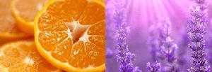 オレンジとラベンダー