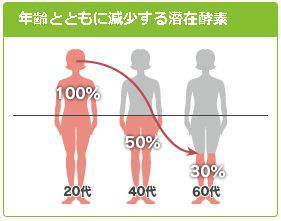 年齢とともに減少する潜在酵素