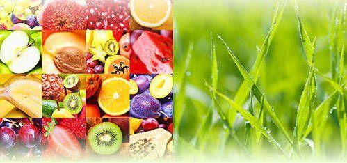 フルーツと大麦野菜