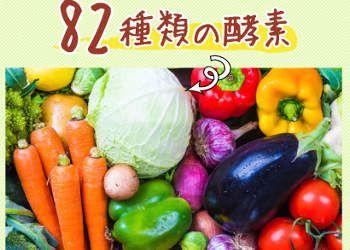 82種類の酵素