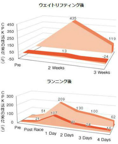 運動後回復結果CPK活性率変化のグラフ