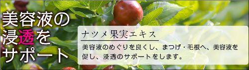 ナツメ果実エキスのイメージ画像