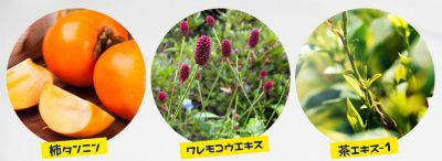 柿タンニン、ワレモコウ、茶の画像