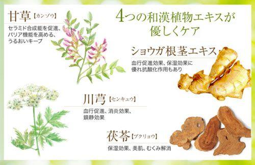 植物エキスのイメージ