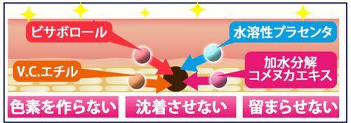 シミに作用する4つの成分の図解