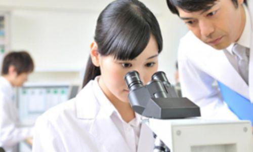 顕微鏡を覗く研究員の女性