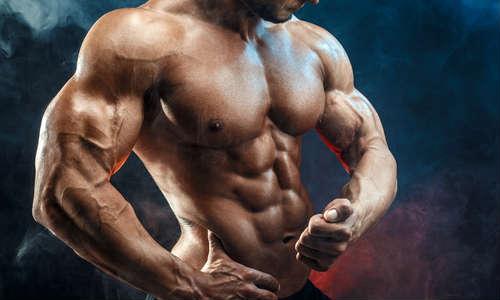 筋肉質な男性の上半身