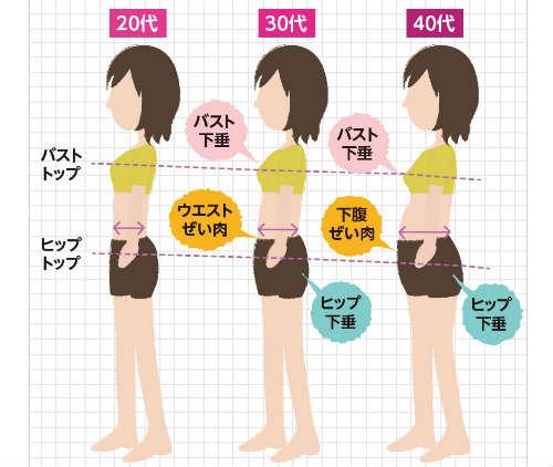 加齢による体型の変化イラスト