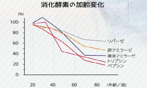 消化酵素の加齢変化折れ線グラフ