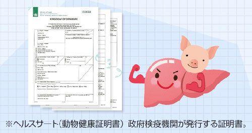 動物健康証明書(ヘルスサート)