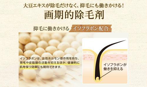 大豆エキスの抑毛作用について