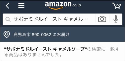 アマゾンの商品検索結果画面