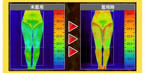 下半身の体温変化画像