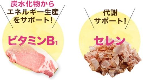 ビタミンB1とセレンのイメージ