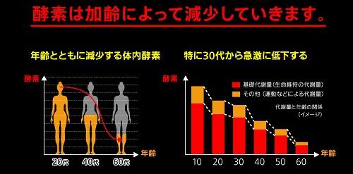 加齢による酵素の減少をあらわすグラフ