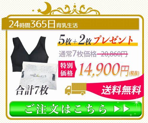 ネルビーふくら夢ブラ365日育乳セット